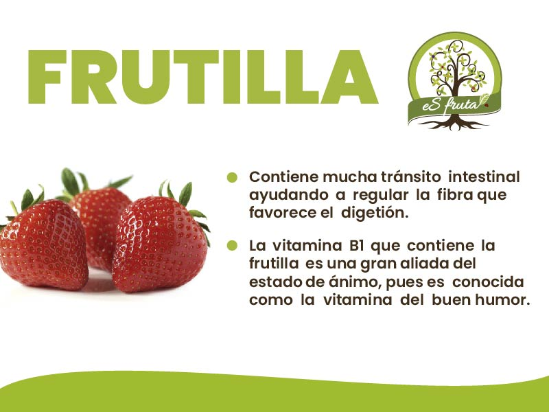 Know the benefits that Strawberry brings you